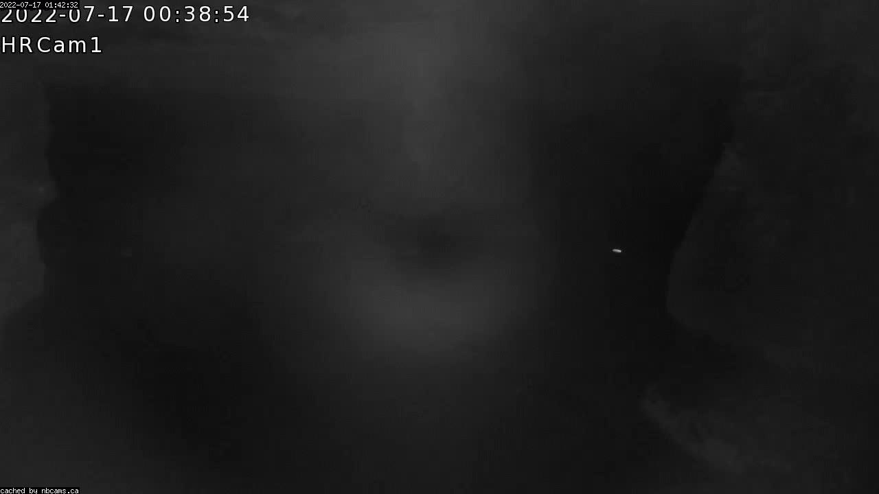 Web Cam image of Hopewell Rocks Provincial Park