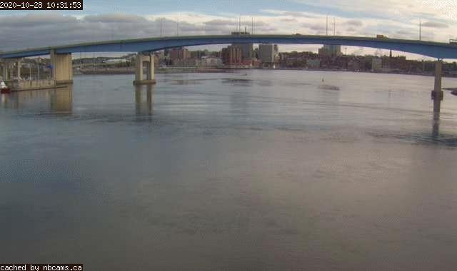 Web Cam image of Saint John (Harbour)